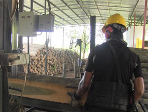 Mill worker with board